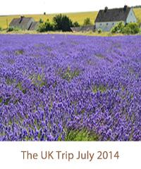 The UK Trip July 2014